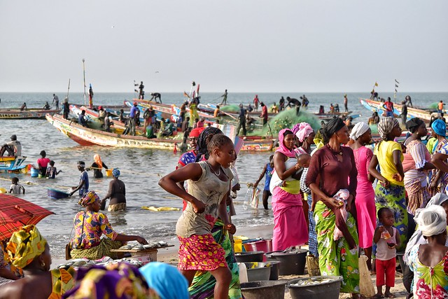 The hustle-bustle of Tanji fishing village in the Gambia!