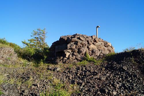 Rauøy fort (156)