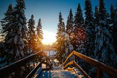 My wonderland/Siberia/Russia