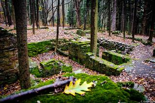Remington Ruins