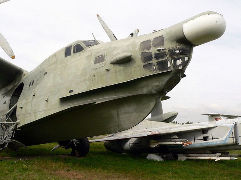 Beriev Be-12 Chaika 1