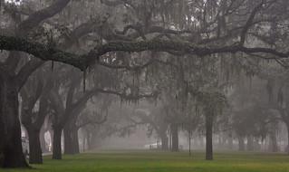 USA - Georgia - Savannah