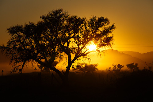 sesriem namib namibia sunrise nature beautiful light sky travel landscape street tree morning color mountain natural photographer outdoor africa shadow amazing weather silhouette tranquility rural countryside perspective safari attractive savanna national park valley aperture desert