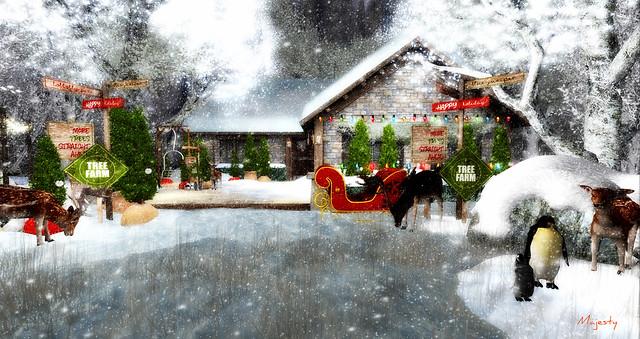 Majesty- Cozy Cottage Christmas Series