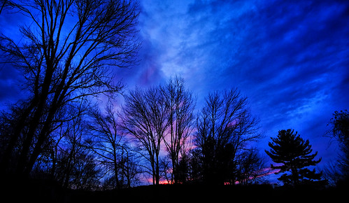 xt10 blue dark tree orange sunset trees dusk clouds fall night fujifilm winter
