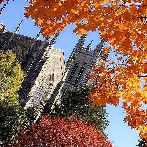 Happy Monday, #BlueDevils! The countdown to #Thanksgiving break has begun! #pictureduke #dukefall //