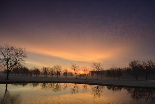 nature trees water sky morning goldenhour nikond5200 niagaracountyny lockportny landscapes beauty