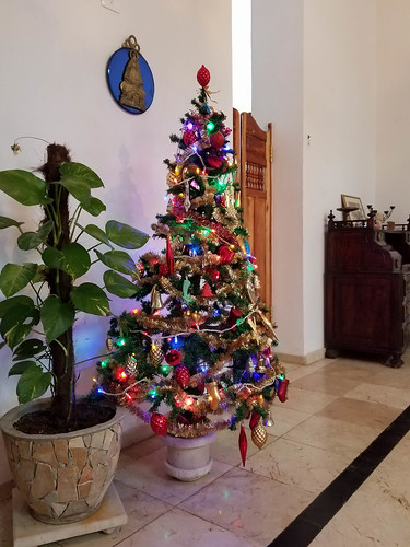 Christmas tree in our casa particular | by mirsasha