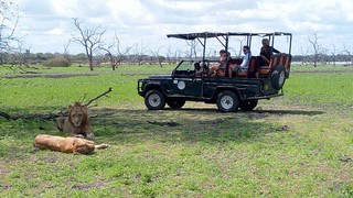 Africa Safari Selous   by Paradise & Wilderness