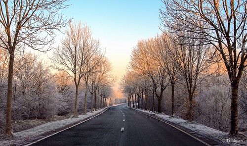 hiver winter road landscape paysage route nature froid chemin