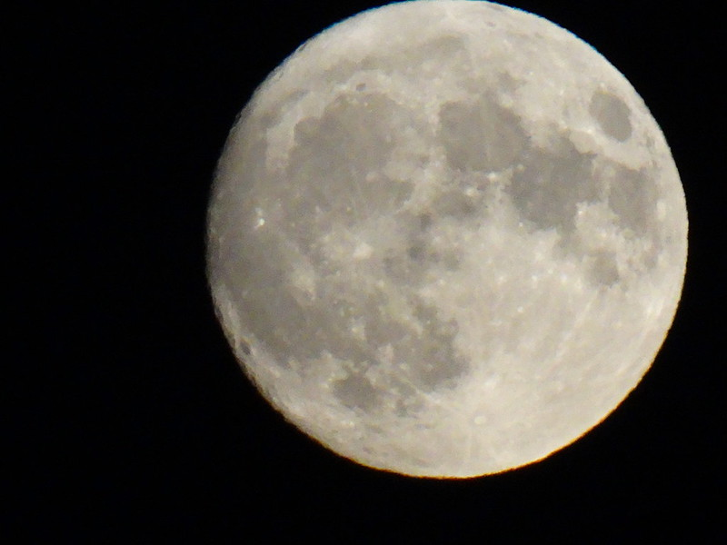Mond, Regen, Dunkelheit und es ist Mondzeit mit der Rakete am Amazonas aufgeschlagen, und es gibt einen Bericht, der es zeigt! Das ist gut! Ich beschloss, es zu holen. Ich wollte lernen, mit einer Rakete ein Loch in mein Ziel zu bohren, wenn Sie wissen, was ich meine. Ich holte sie und legte sie in meine Welt. Danach habe ich den Mantel der Zeit mit grauen Wetterstreifen bezogen, einen Bolzen hinzugefügt und dann bin ich hineingegangen und habe sie aufgestellt. Das hat Spaß gemacht, und ich bin sicher, dass diese Rakete für etwas anderes besser geeignet ist, aber sie funktioniert bereits  00135