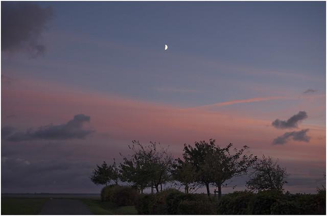 Almost Evening in Ahrenshoop