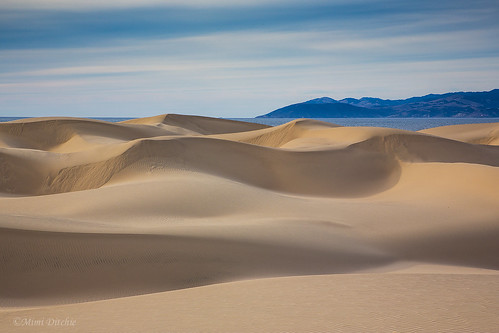oceanodunes dunes sanddunes pointbuchon pacificocean curving curvingdunes sand shadows clouds getty gettyimages mimiditchie mimiditchiephotography