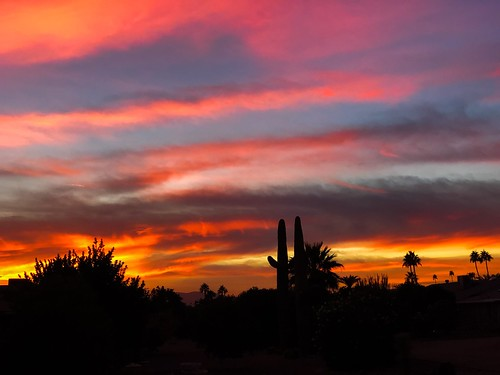 suncitywest colorful color tonight arizona sunset monsoon weather clouds summer fall silhouette colros sky cloud outdoor sunshower sun shower city west landscape backyard nikon cactus hardtosee amazing