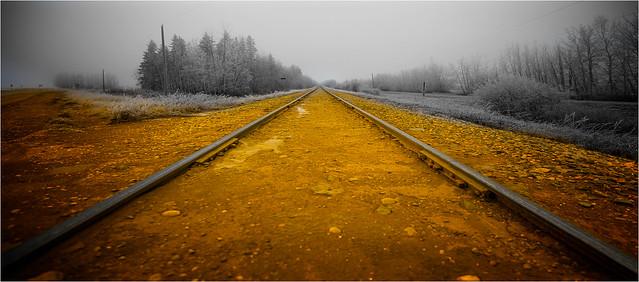 yellow brick road v.2.01