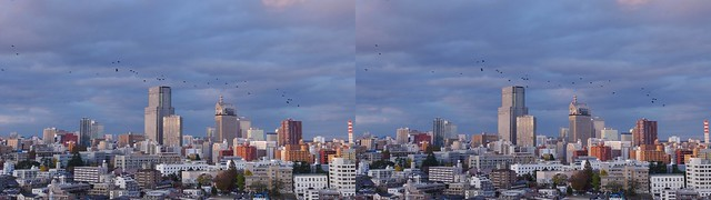 Central of Sendai with crows, 4K UHD, stereo cross view