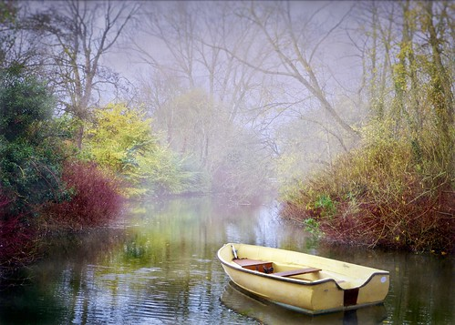 landscape nature water misty river boat