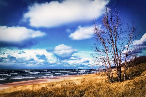 lakemichigan autumn blue cloud coast fall lake lakeshore shoreline sky tree water waves