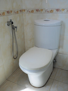 Toilet bowl is clean but old   by huislaw
