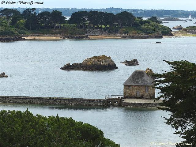 Le moulin à marée de l'Île de Bréhat -  Côtes-d'Armor - Bretagne - France - Europe