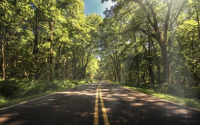 Skyline Drive - Shenandoah National Park (Virginia)