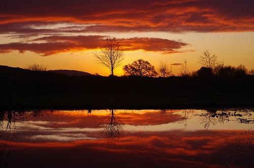 sunrise sun shine clouds water pond pool nature trees silhouette sundorne shrewsbury shropshire
