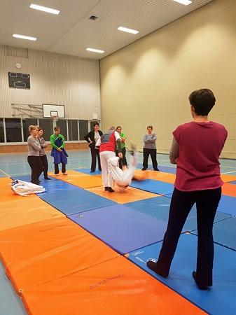 2017 Judolektionen TB