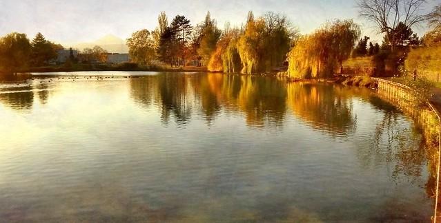 Sélestat - Lac de canotage