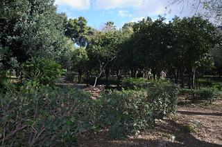 National_Garden