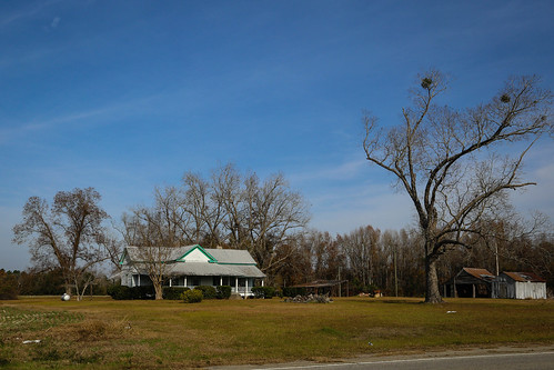 canon 6d 24105mml lens bambergsc south carolina rural country farm home road barn house shed yard building december tree mistletoe crops fields lawn vanishing southern america usa landscape pastoral family southernlife