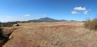 211 Looking north toward Cuyamaca Peak from the upper end of the Harvey Moore Trail | by _JFR_