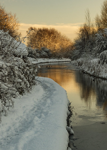 canal snow landscape water sunset tree trees reflection sky river birmingham