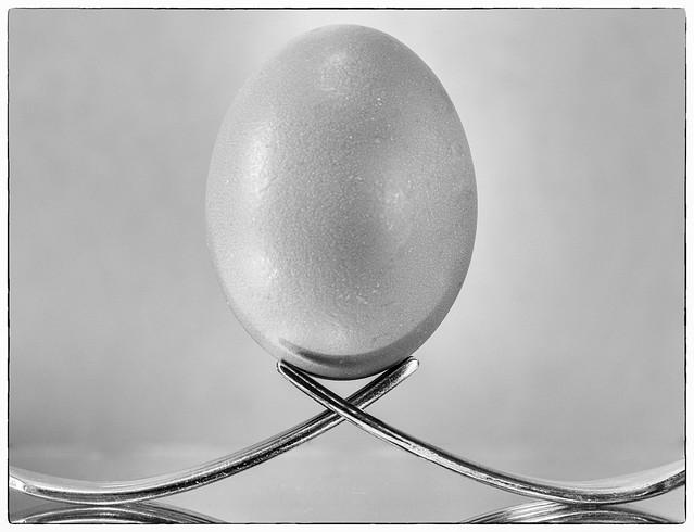 20171117_9875_7D2-59 Forked Egg (321/365)