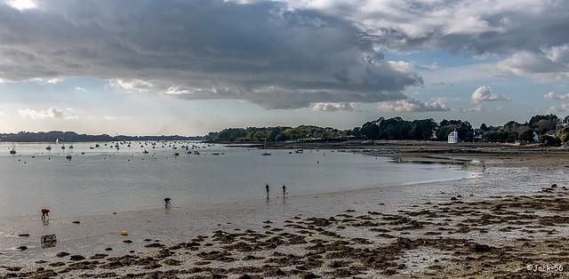 _DSF6242- Arradon. Golfe du Morbihan.