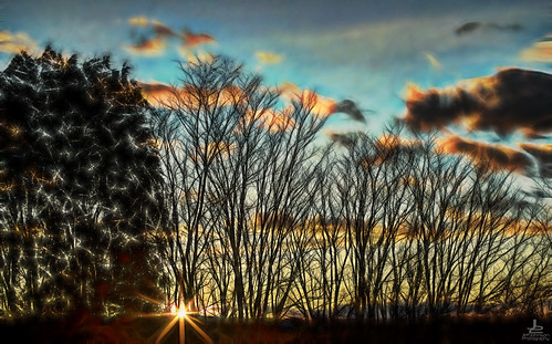 good morning sunshine eastern view sunrise fractalius