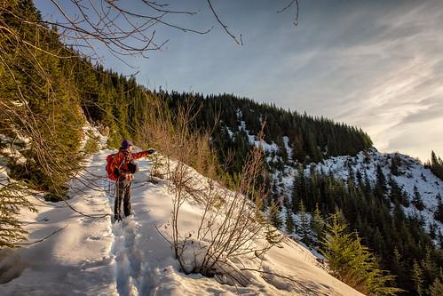 snow wilbur loggingroad mountain landscape