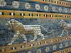 Babylónská Procesní cesta v Pergamonském muzeu, foto: Petr Nejedlý