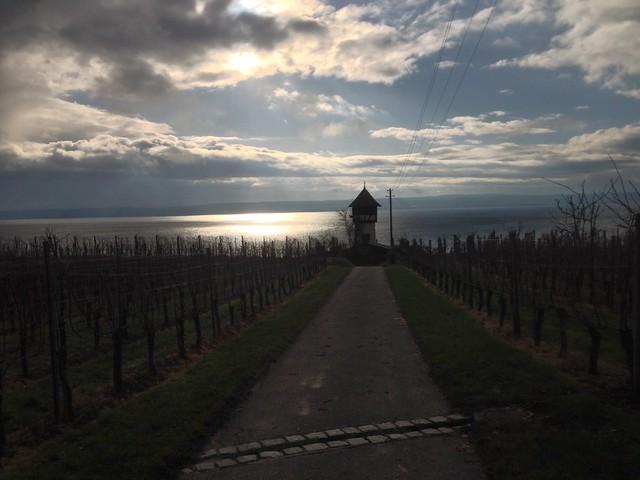 Bei Meersburg am Bodensee