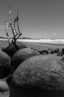 Moreaki Boulders, NZ-4351