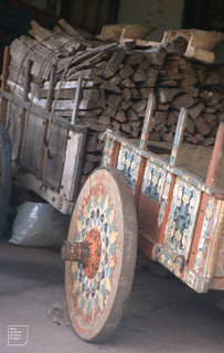 Workaday ox cart loaded with timber