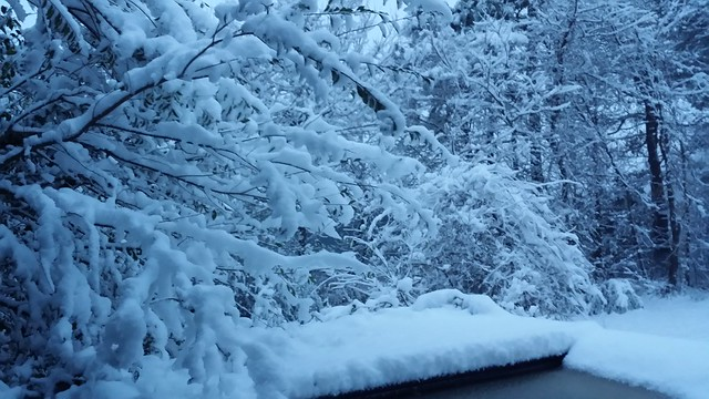 Snow on Dec 9 2017 Delaware