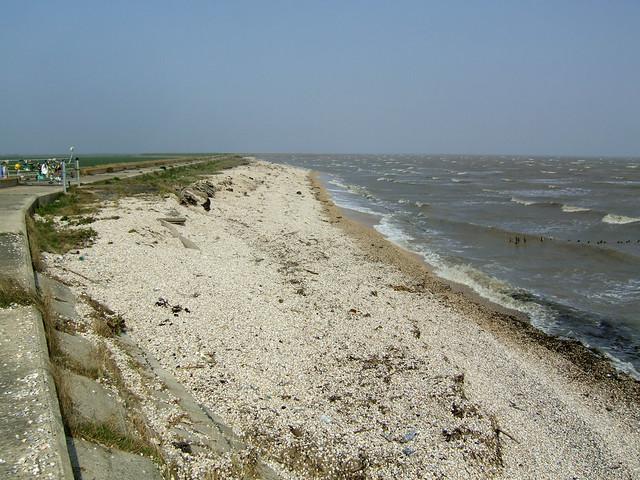 Shell beach near Burnham-on-Crouch