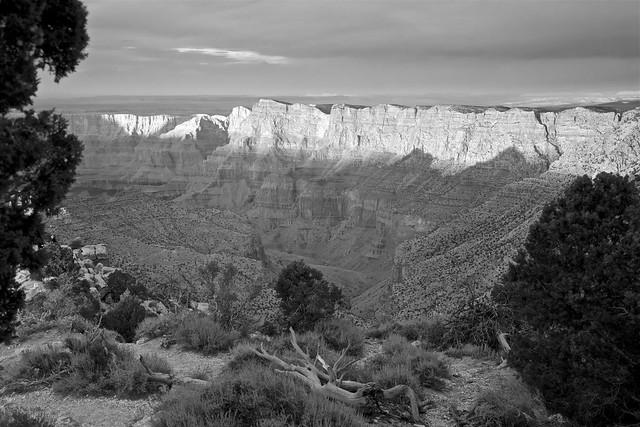 Grand Canyon Aglow - South Rim BW