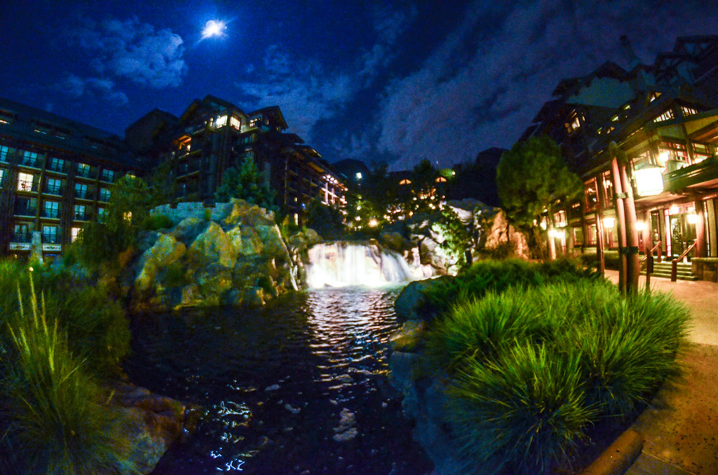 Wilderness Lodge night