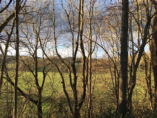 Winter view from the old railway track Winchester to West Meon walk