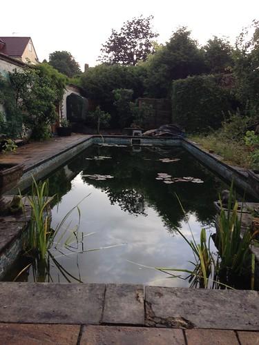 Pond clean Southampton