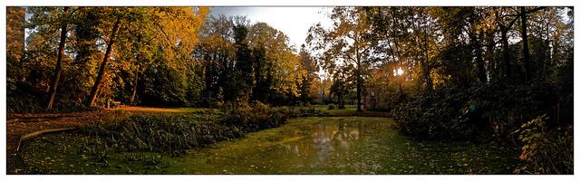 L'étang du jardin menacé
