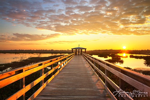 beaumont texas marsh wetlands sunrise sunset boardwalk reflection clouds glow cattail cat tail scenic