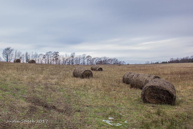 Wellsville Hay Bales
