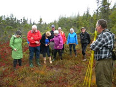 Seniors College Bog Field trip 2017 (11)